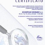 Regolamento UE 333/2011